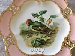 Antique Rare & Very Fine Royal Crown Derby Porcelain Gorgeous Bird Cabinet Plate
