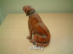 Royal Doulton Red Setter With Collar. HN 976. Very Rare. 1930