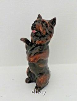 Very Rare Royal Doulton Cairn Terrier Begging Hn 2589 Rare Colourway Perfect